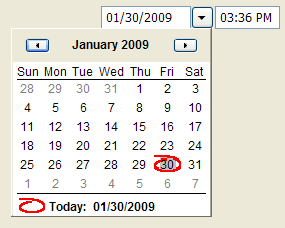 DateTimePicker